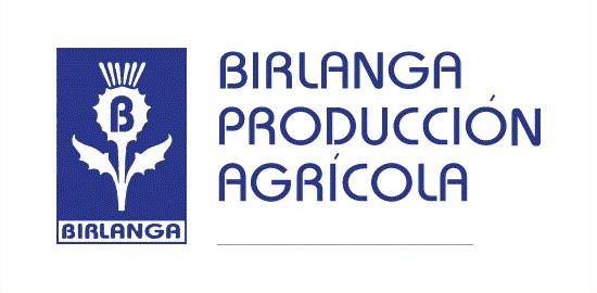 Mayorista Flor cortada BirlangaP.A.